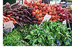 farmers_market, harvesting vegetables from the garden, why should I stagger planting my garden, when do I harvest, when should I plant my garden,