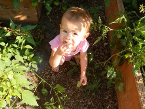 a baby in the garden, do toddlers love gardens, how do you get your kids to eat more veggies, what kind of vegetables should I grow that my kids will eat,