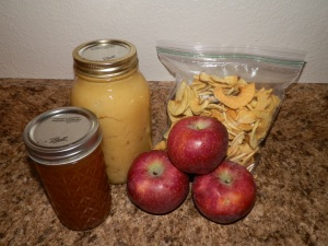 how to process apples, how to make apple jelly, how to make apple sauce, how to make dried apples,