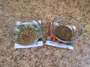 starting seeds, how to start seeds, growing from seed