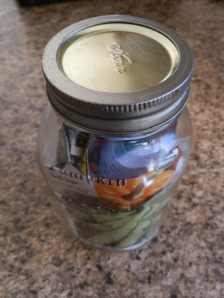 saving seeds, how to save seeds, saving seeds in a bottle, how to store seeds